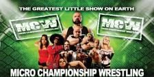 Hulk Hogan's Midget Wrestling